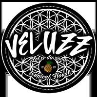 Logo Veluzz